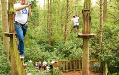 Go Ape at Bedgebury