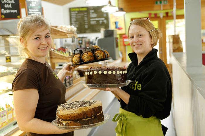Bedgebury Cafe Team