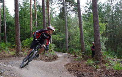 Quench Mountain Bike Hire at Bedgebury